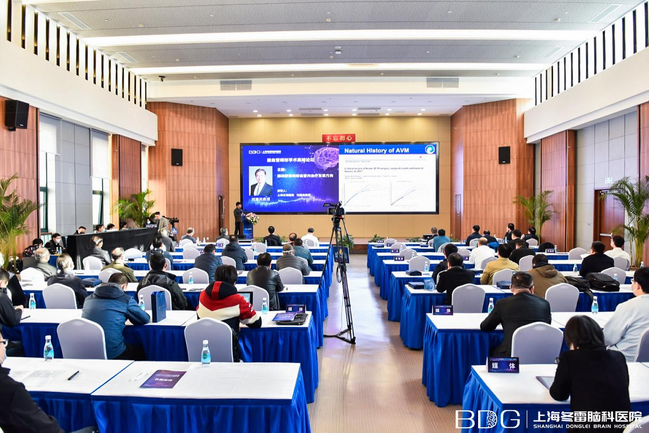 国内外神经外科专家齐聚一堂——第二届神经外科年会暨冬雷脑科第三届学术年会在上海冬雷脑科医院隆重举行