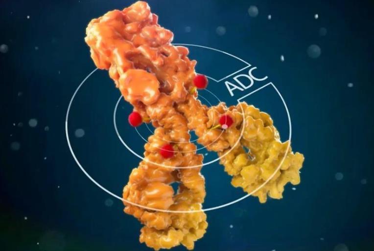 首个国产ADC药品获批上市