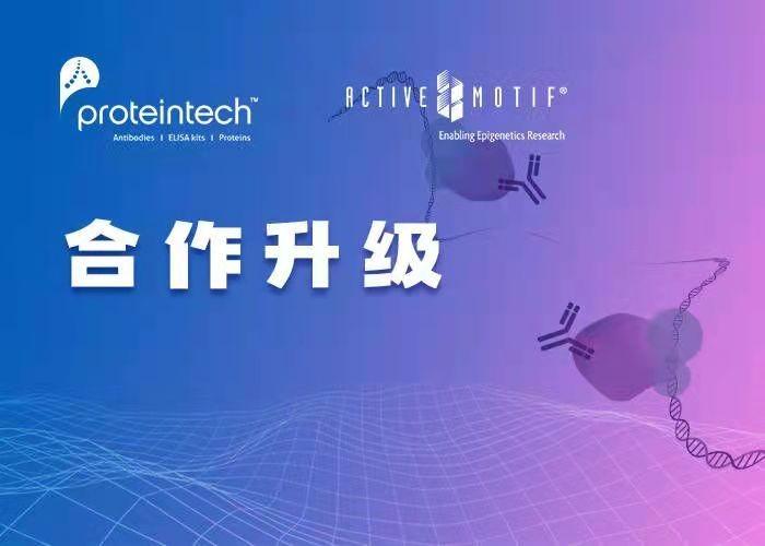 "Proteintech战略投资表观遗传学专家Active Motif,完善""人类抗体组计划"""